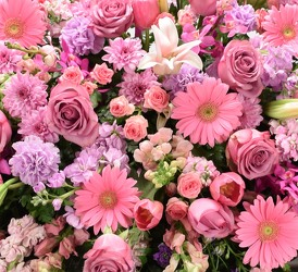 Bleeding Heart From Dallas Sympathy Florist In Tx