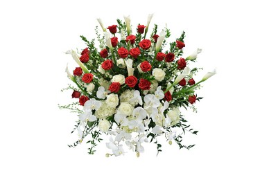 sympathy flowers delvery dallas florists