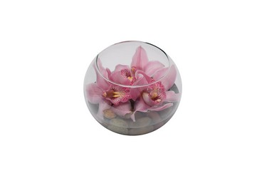 Bubble Bowl of Orchids from Dallas Sympathy Florist in Dallas, TX