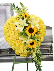 Dallas delivery of Sympathy easel sprays and funeral sprays
